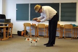 Pies i wilk.Lekcja historii