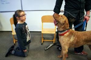 Pies przewodnik-warsztaty weterynaryjne